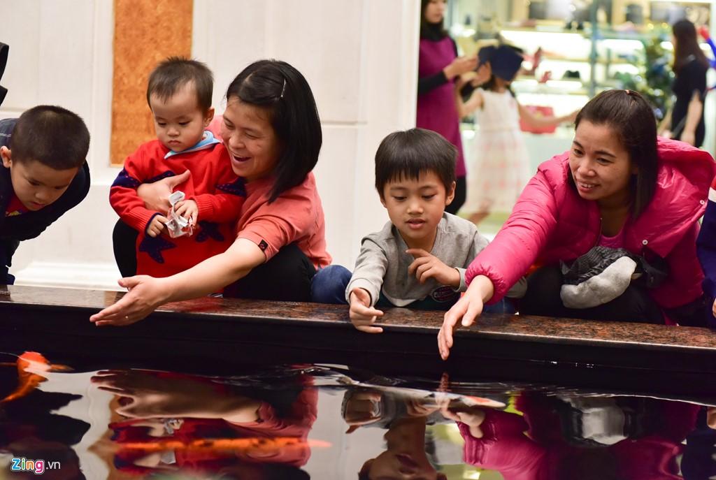 Những em bé thích thú ngắm đàn cá rực rỡ sắc màu.