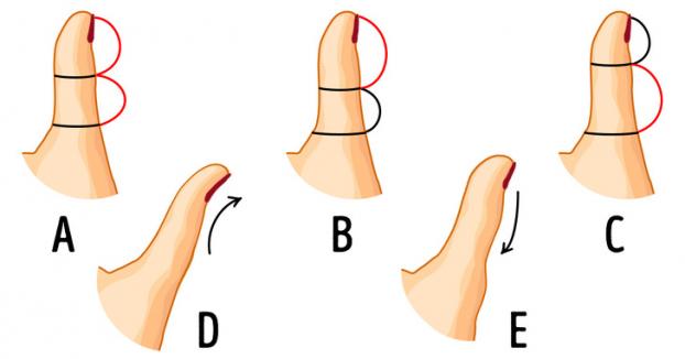 Nhân tướng học: Giơ ngón tay cái và chú ý vào chi tiết này để đoán tính cách cực chuẩn